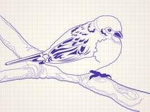 Oiseau tiré par la main sur un branchement d'arbre illustration stock