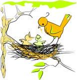 Oiseaux Photo libre de droits