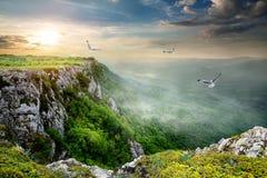 Oiseaux au-dessus de plateau Photographie stock libre de droits