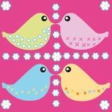 Oiseaux colorés Image libre de droits