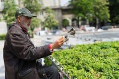Oiseaux d'alimentation d'homme Photographie stock libre de droits