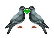 Oiseaux d'amour Images stock