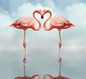 Oiseaux d'amour Photo libre de droits