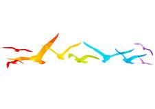 Oiseaux d'arc-en-ciel Image libre de droits