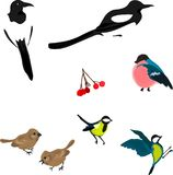 Oiseaux d'hiver Image libre de droits