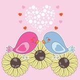 Oiseaux dans l'amour Images stock