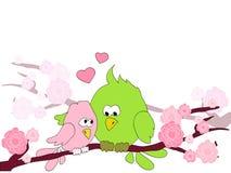 Oiseaux dans l'amour Photographie stock