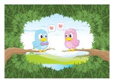 Oiseaux dans l'amour photo stock
