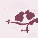 Oiseaux dans l'amour Images libres de droits