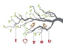 Oiseaux dans l'amour sur un branchement d'arbre Photo stock