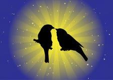 Oiseaux dans le vecteur d'amour Photo stock