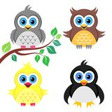 Oiseaux de bébé colorés Photo stock