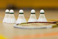 Oiseaux de badminton photographie stock libre de droits