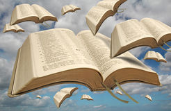 Oiseaux de bible de la liberté images libres de droits