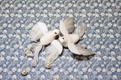Oiseaux de colombe de blanc de symbole de jour du ` s de Valentine Photo stock