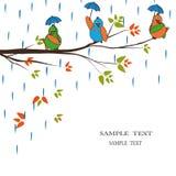 Oiseaux de dessin animé sous la pluie Photos stock
