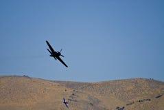 Oiseaux de guerre en vol photographie stock libre de droits