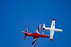 Oiseaux de guerre en vol photo libre de droits