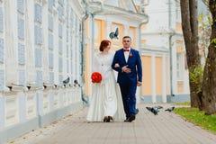 Oiseaux de jeunes mariés et de vol Photographie stock