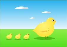 Oiseaux de mère et de chéri Photos stock