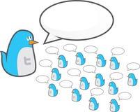 Oiseaux de palpeur de Twitter Photos libres de droits