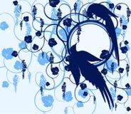 Oiseaux de série. Jay Photos libres de droits