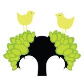 Oiseaux de source Photos libres de droits