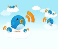 Oiseaux de Twitter Photos libres de droits
