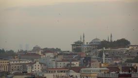 Oiseaux de vol au-dessus de vieille partie d'Istanbul avec les bâtiments historiques au ciel nuageux Mouvement lent, pleine vidéo clips vidéos