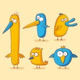Oiseaux drôles Illustration Stock