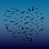 Oiseaux en forme de coeur photo stock