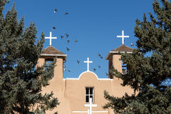 Oiseaux espagnols de mission Photos libres de droits