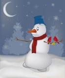 Oiseaux et une boule de neige Photographie stock libre de droits