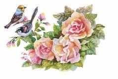 Oiseaux exotiques sauvages d'aquarelle sur des fleurs Photos stock