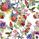 Oiseaux exotiques sauvages d'aquarelle sur le modèle sans couture de fleurs sur le fond blanc Images stock
