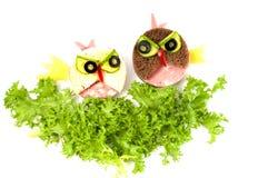 Oiseaux fâchés de sandwich drôle pour des enfants Image stock