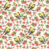 Oiseaux, fleurs roses et coeurs Modèle sans couture, aquarelle Images stock