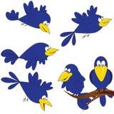 Oiseaux mignons Image stock