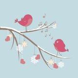 Oiseaux mignons dans l'amour Image stock