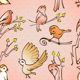 Oiseaux sans couture de modèle Image stock