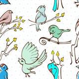Oiseaux sans couture de modèle Photo stock