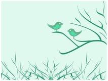 Oiseaux se reposant sur le branchement Photo libre de droits