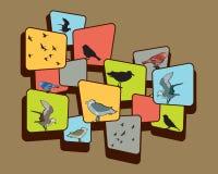 Oiseaux sur Brown Illustration Stock