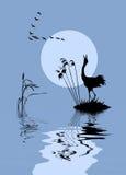 oiseaux sur le lac illustration libre de droits