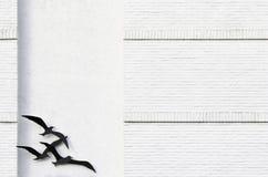 Oiseaux sur le mur texturisé Image libre de droits
