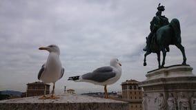 Oiseaux sur un monument à Rome, à côté d'une statue Photo stock