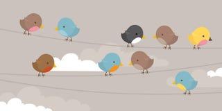 Oiseaux sur une ligne Photos libres de droits
