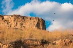 Oiseaux volant au-dessus de la colline Images stock