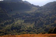 Oiseaux volant au-dessus des montagnes Image stock