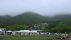 Oishipark bij Meer Kawaguchiko bij Onderstel Fuji in Japan - beroemde Fujiyama - KAWAGUCHIKO/JAPAN - JUNI 17, 2018 stock videobeelden